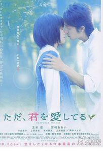 Heavenly Forest 2006 Romantic Movie